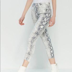 YMI Snake print Jeans